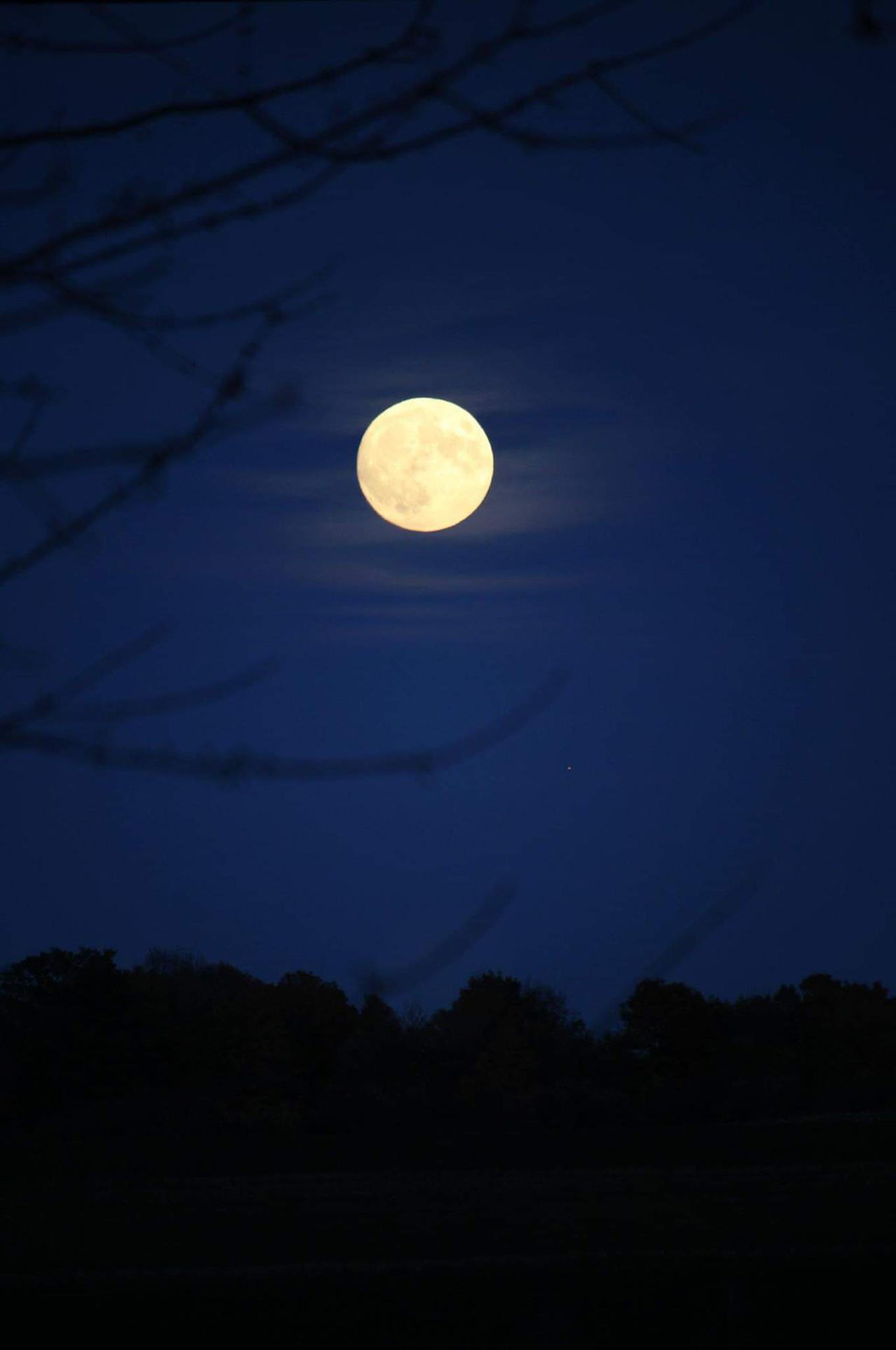 Halloween Moon in Ontario County